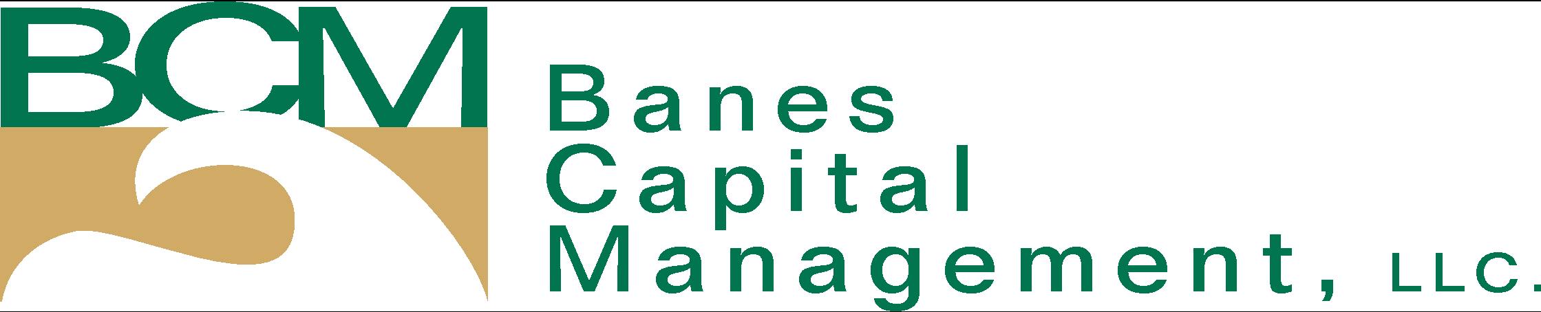 Banes Capital Management